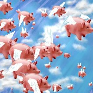 EARMARKS: Pigs flying in Washington