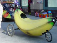 Obama-Car Vegetarian To Fight Obesity
