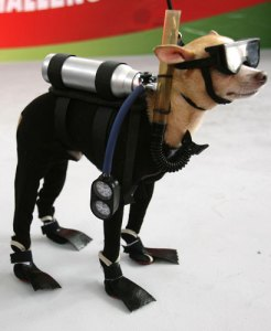 Obama-Submarine